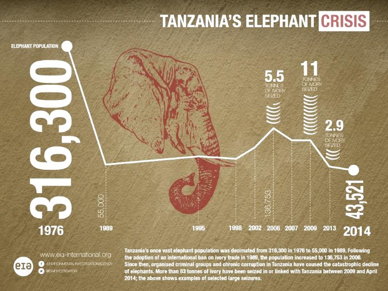 Graph of Tanzania's elephant population crash from 2006 to 2014. Image: EIA.