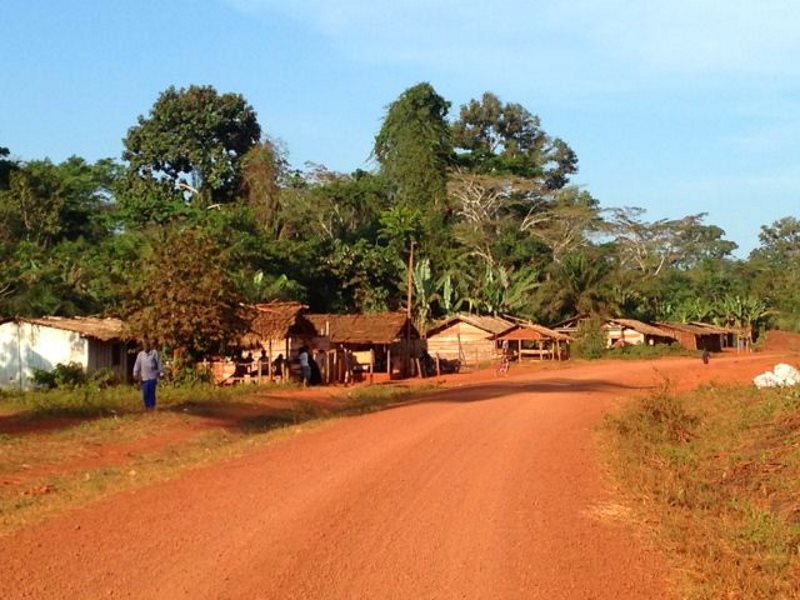 The small roadside village of Banana, home to many Baka people, where they are increasingly vulnerable to exploitation. Photo: Baka Beyond.