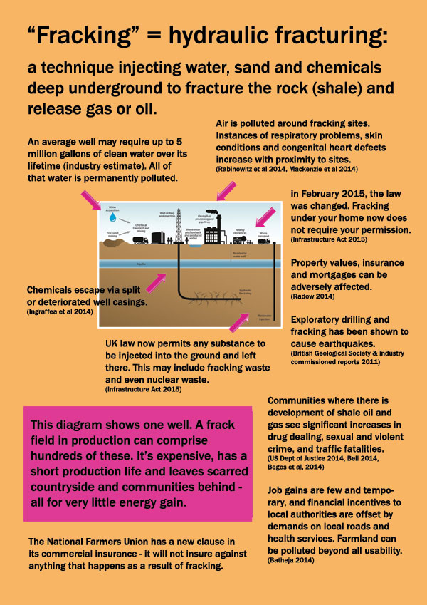 Realities of Fracking page 2. Image: Toxin Free Community.