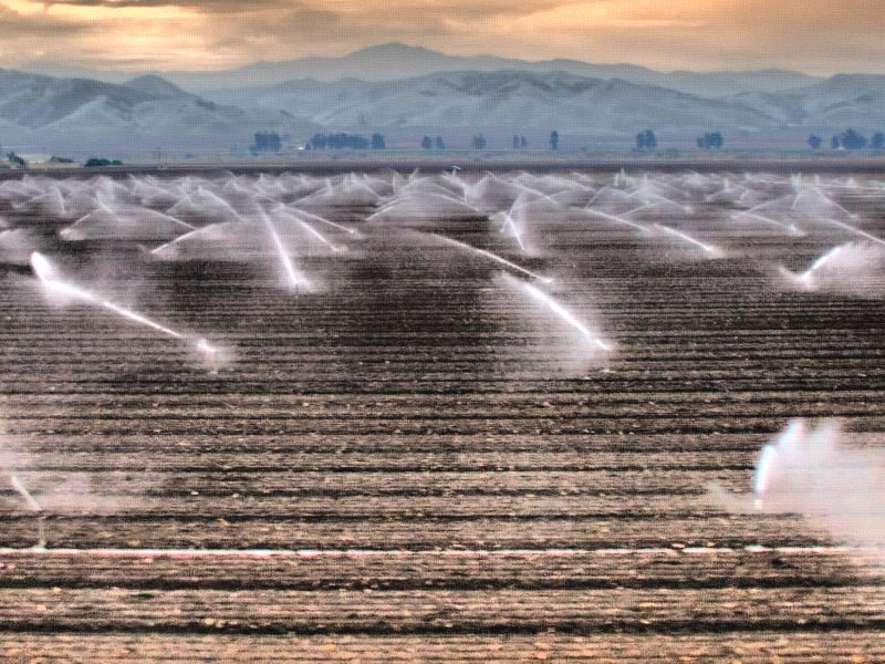 Irrigation near Fresco in central California. Photo: Wendell via Flickr (CC BY-NC-ND).