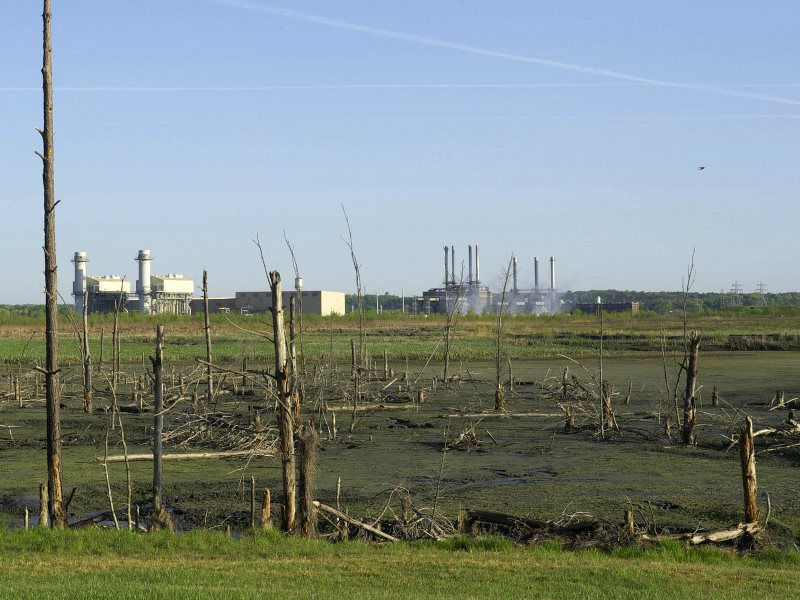 Coal ash pond with dead trees and the Duke Energy Buck coal-fired power plant in the background, 2014. Photo: Dot Griffith, Waterkeeper Alliance via Flickr (CC BY-NC-ND).