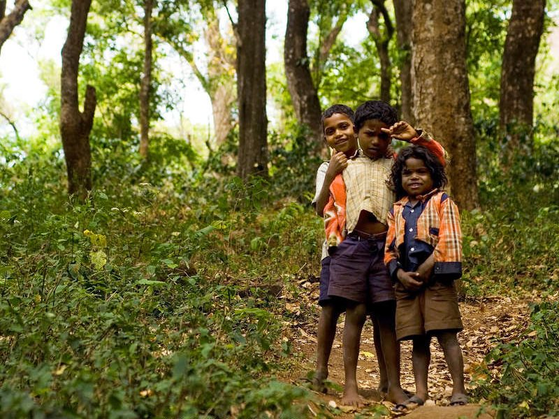 Soliga children in their forested hills in southern India. The tribe has been targetted by zealous forestry officials who have even, in defiance of the law, seized the honey they gather from the forest. Photo: Shrenek Sidalgi / Survival International.