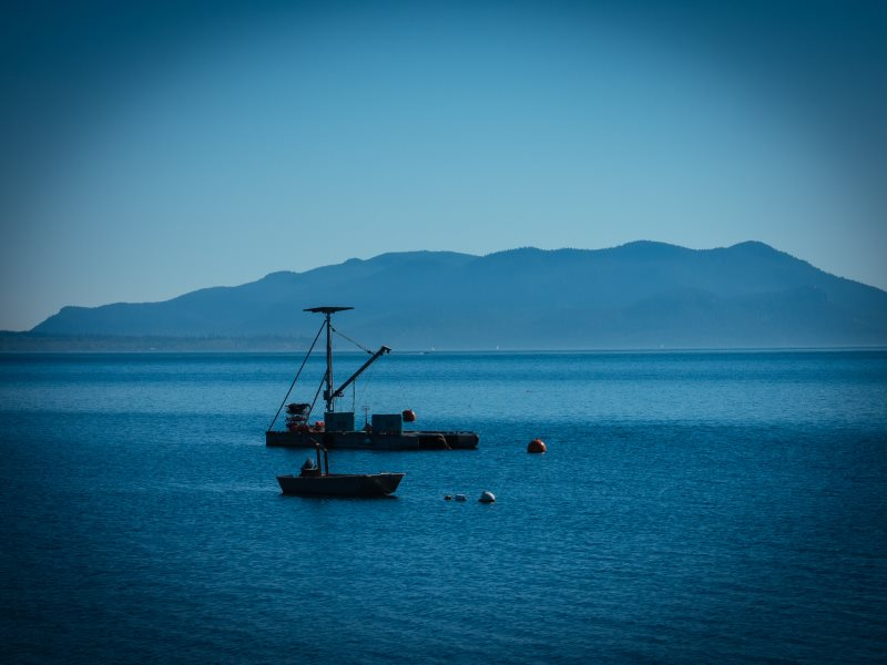 A quiet day at sea. Photo: Lummi Island Wild.