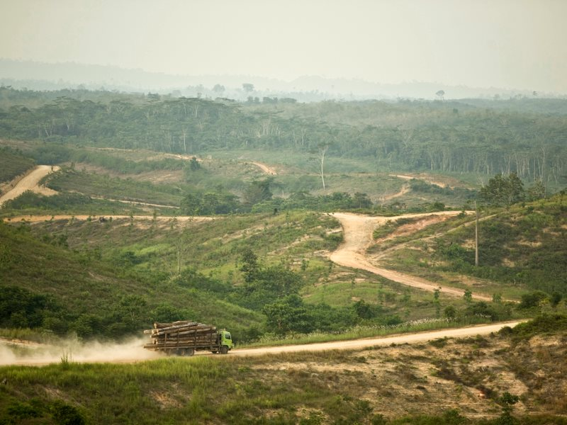 A logging truck transporting rainforest timber inside Asia Pulp and Paper's PT Wira Karya Sakti pulpwood forest license. Jambi Province, Sumatra, Indonesia. Photo: Rainforest Action Network via Flickr (CC BY-NC).