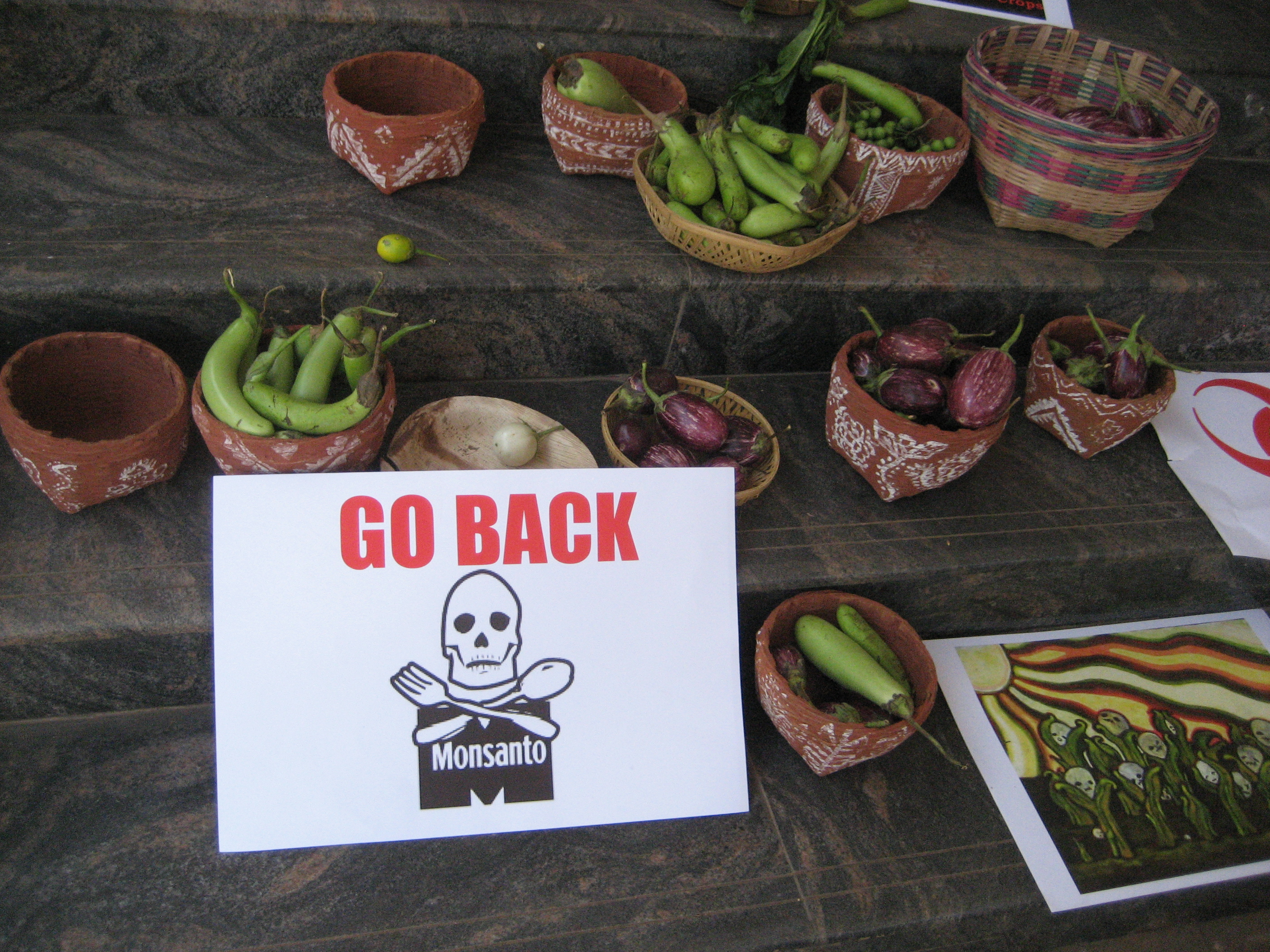 Baskets of different varieties of Brinjal put out by protesters during the listening tour of India's environment minister relating to the introduction of BT Brinjal to Bangladesh. Photo: Infoeco via Wikimedia Commons (CC BY-SA 3.0).