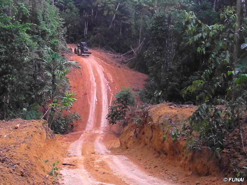 Armed loggers and powerful ranchers are razing the Kawahiva's forest to the ground. Photo: FUNAI>