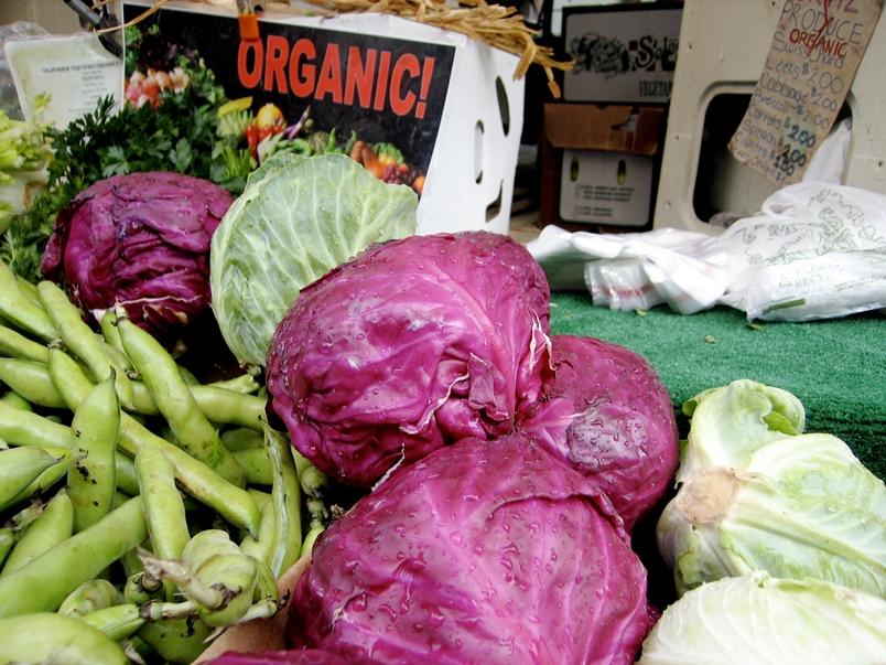 Organically grown red cabbage - good for the environment and you! Photo: c3lsius_bb via Flickr (CC BY-ND 2.0)