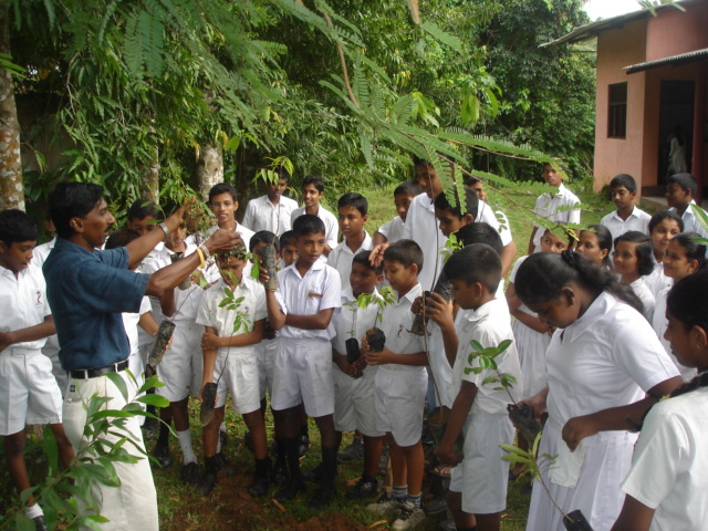 Educating children on the conservation of plants. Photo: Damitha Rajapakse