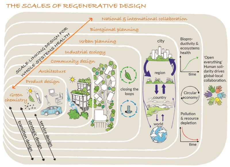 Figure 1: The Scales of Regenerative Design (reproduced from Designing Regenerative Cultures, Wahl, 2016; illustrator Flavia Gargiulo)
