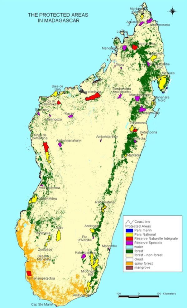 Spiny forests, shaded gold on this map of Madagascar's protected areas, cover the southern end of the island. Image: Masindrano via Wikimedia Commons (CC BY-SA).