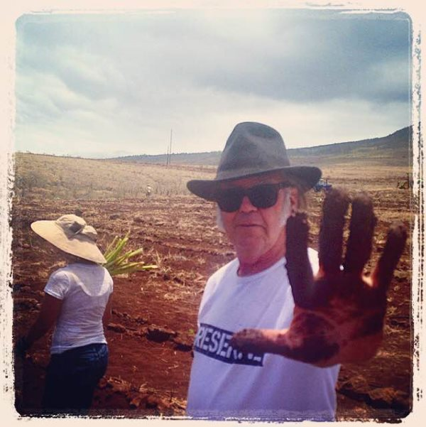 Neil Young: Hands in the Soil.