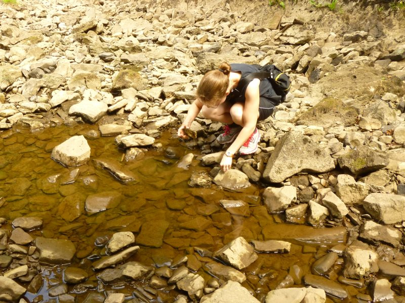 Pools can provide a refuge for freshwater invertebrates in temporary streams. Photo: Tory Milner.