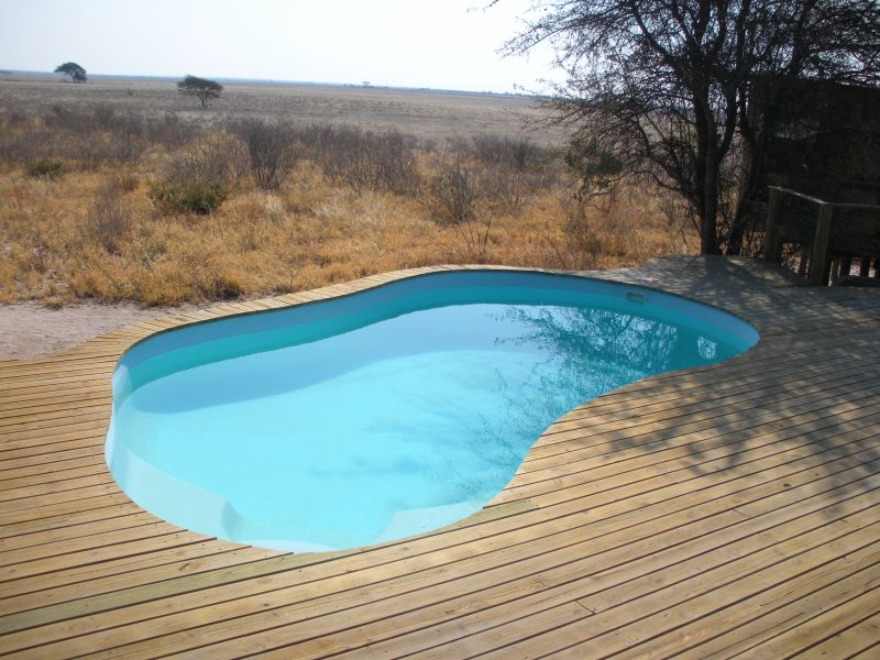 The Bushmen have been evicted from their land in part to make way for luxury tourist lodges - complete with swimming pools in the heart of the Kalahari desert. Photo: Survival International.