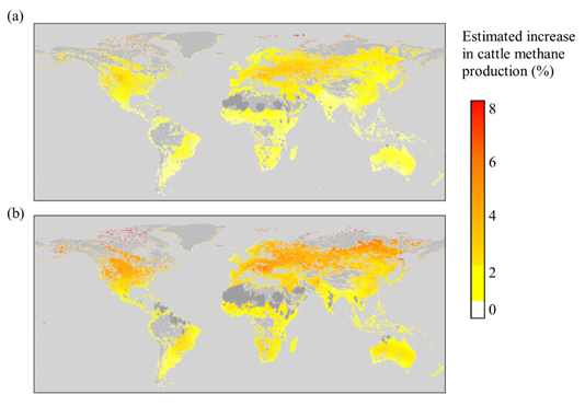 Image: the predictions of climate- and forage-driven increases in cattle methane production under temperatures predicted for 2050 using (a) a low estimate of future temperature changes (RCP 2.6) and (b) a high estimate of future temperature changes (RCP 8