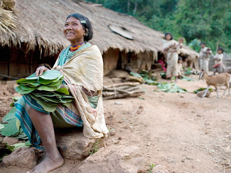 A Dongria Kondh tribeswoman, Sinde seperates the tendu leaf she gathered from the jungle and packs it for selling in the weekly market in the neighbouring city of Munigura. The indegenous tribe, Dongria Kondh will be the first to be displaced by the minin