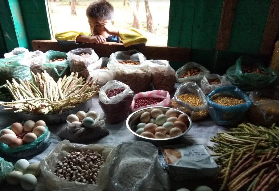 Native varieties of maize and bean seeds, and free-ranch eggs on display at a community event in Crescencio González. Photo by Inés Franceschelli