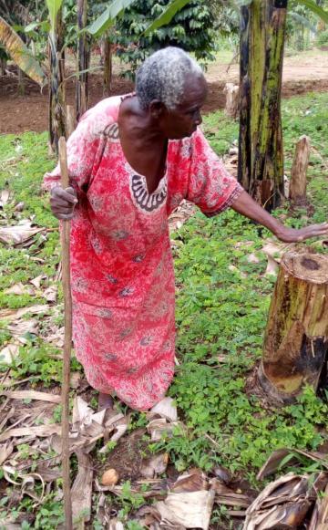 Evangeline Kagwiite in her garden. Photo: Dennis Tabaro
