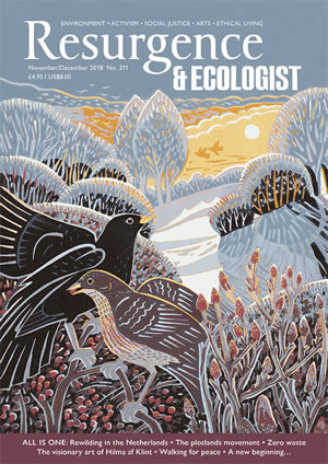 Current edition cover