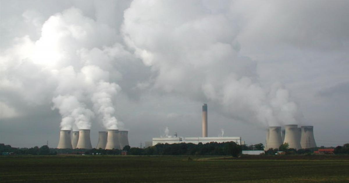 Hardwood forests cut down to feed Drax Power plant, Channel 4 Dispatches claims