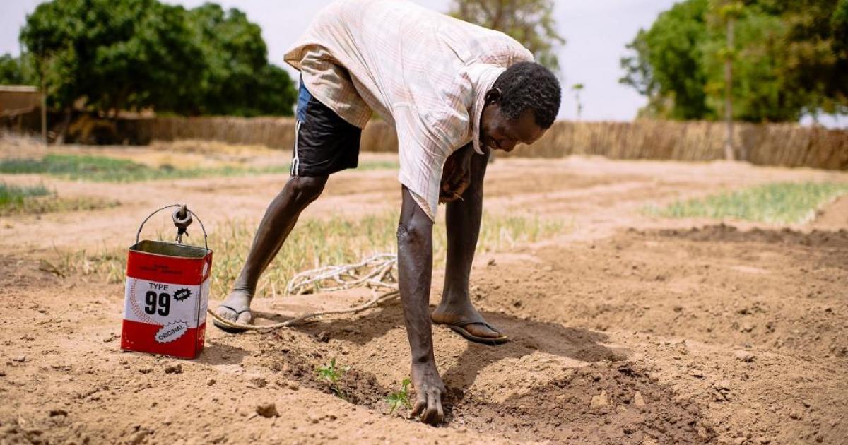 0.41432800_1485252890_africa-drought.jpg