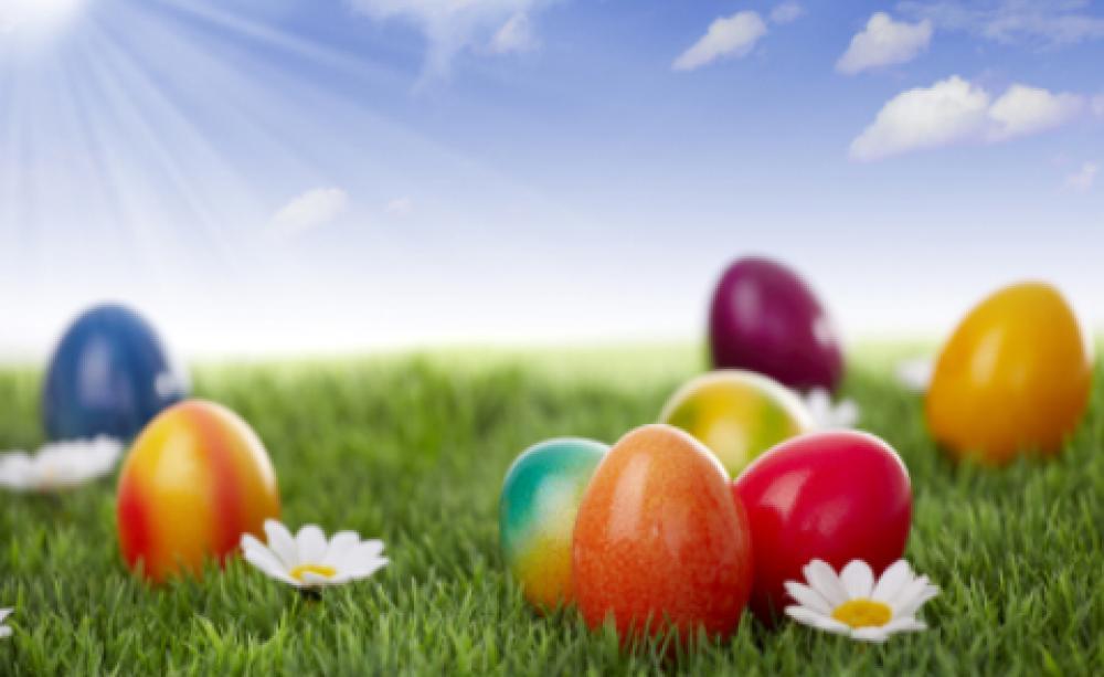 Ethical easter egg alternatives negle Choice Image