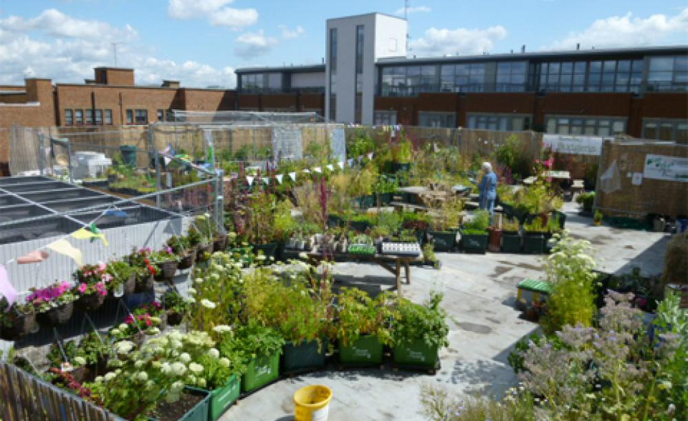 Why Not Put Community Garden On Roof Of >> Supermarket Rooftop Gardens An Exercise In Community Building