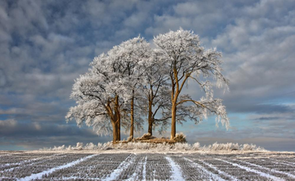 - PHOTO GALLERY: Landscape Photographer Of The Year