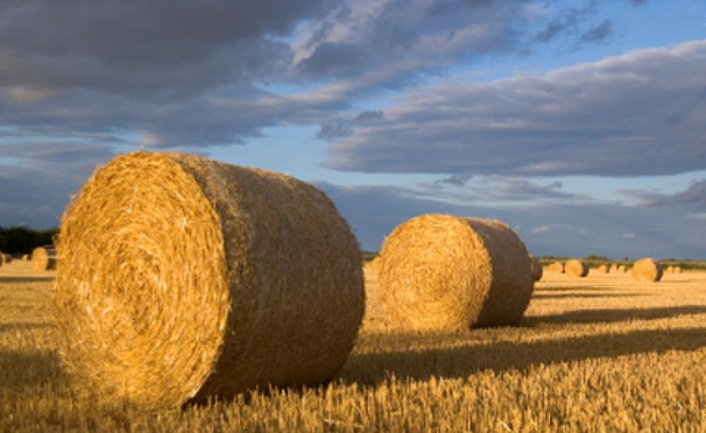 Are Straw Bales The Future Of Sustainable Building - Bales