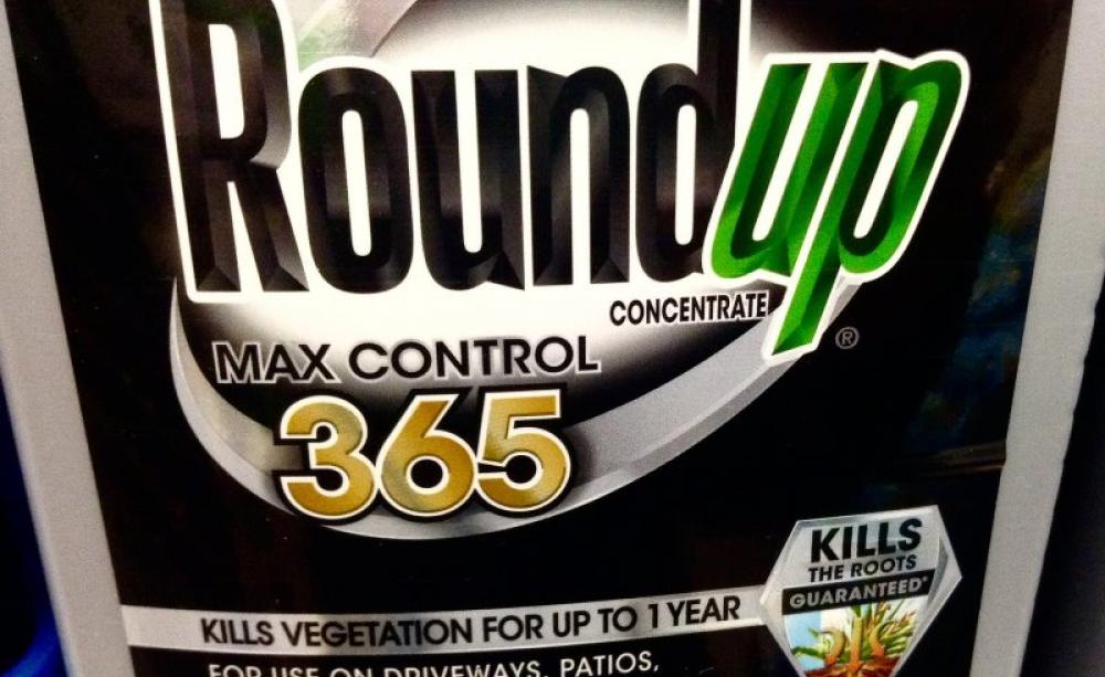 Monsanto And Epa Knew Of Glyphosate Cancer Link In 1981