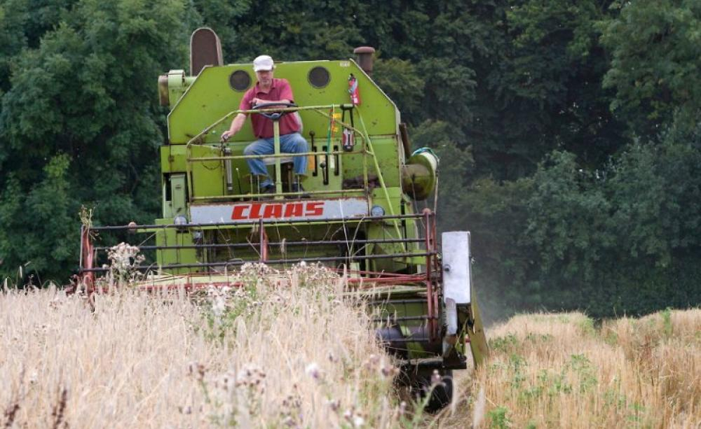 Farming With The Grain John Letts And His Evolutionary Made For
