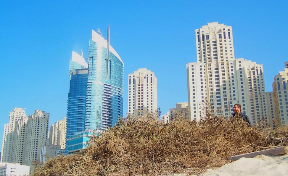 Concrete or beaches worlds sand running out as global skyscrape of dubai seen from the beach photo zenahla via flickr cc gumiabroncs Gallery
