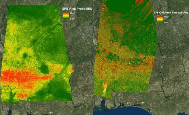 Map of outbreaks of southern pine beetles in Alabama