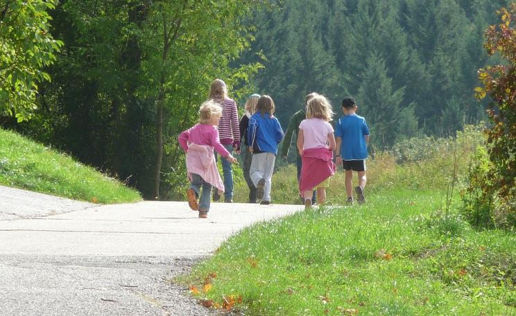 A group of children walking towards large trees