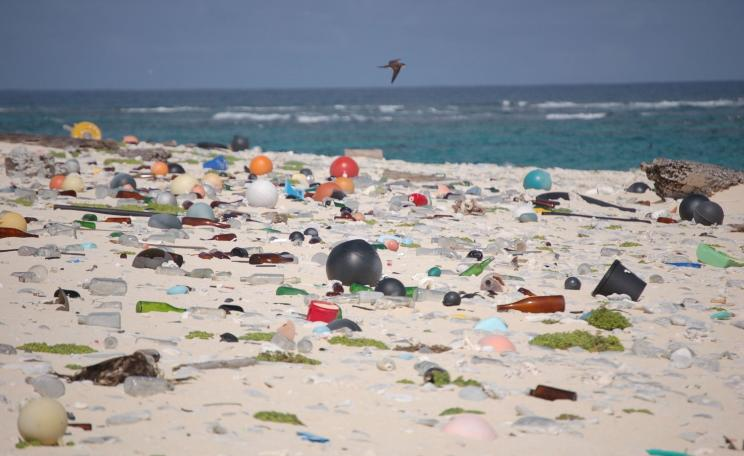 Beach littered with plastics
