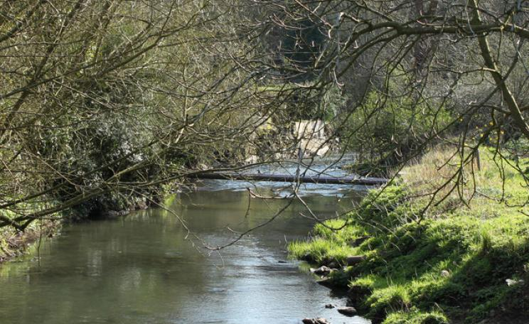 Frome River