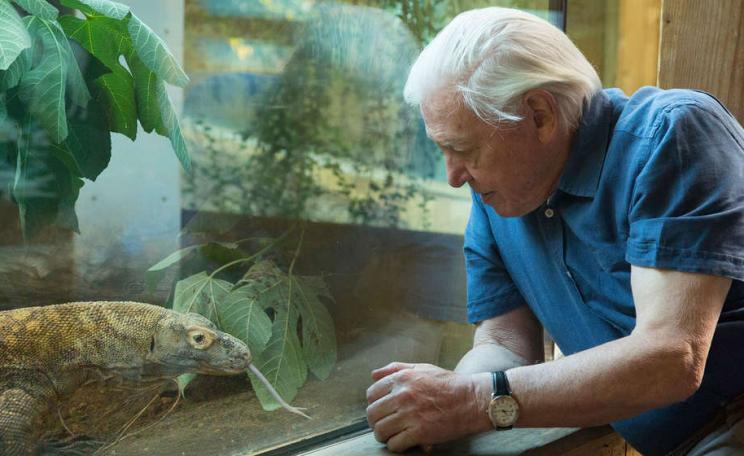 David Attenborough at London Zoo