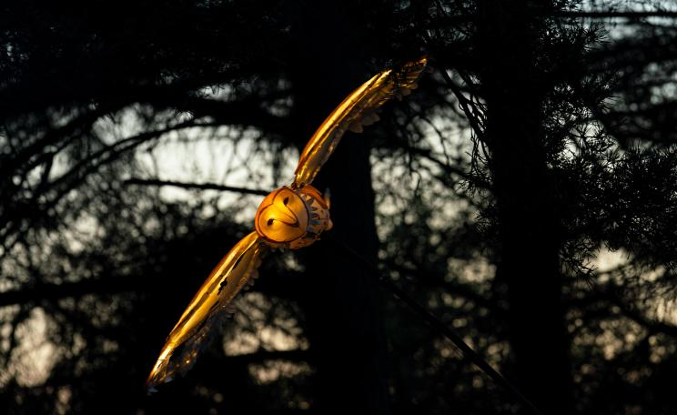 A model of an owl flying through a forest.