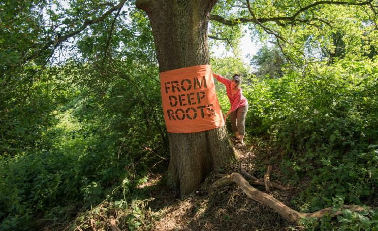 A woman is placing a large orange banner on an oak tree. The words 'From deep roots' can be read on the bark as the letter shapes are cut out of the cloth, like a stencil.