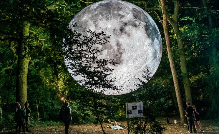 Luke Jerram's model of the moon in a forest setting.