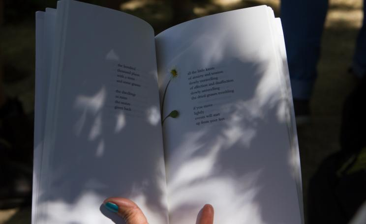 A poetry book being read outside in dappled shade with a flower in the pages.