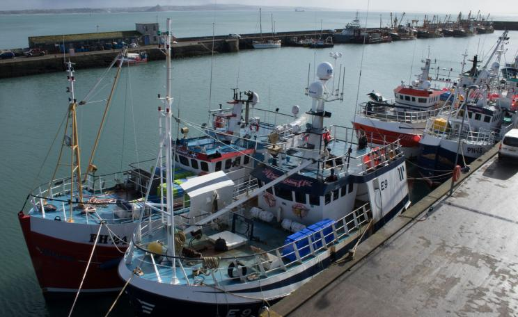 Fishing boats in Newlyn Harbour, Cornwall