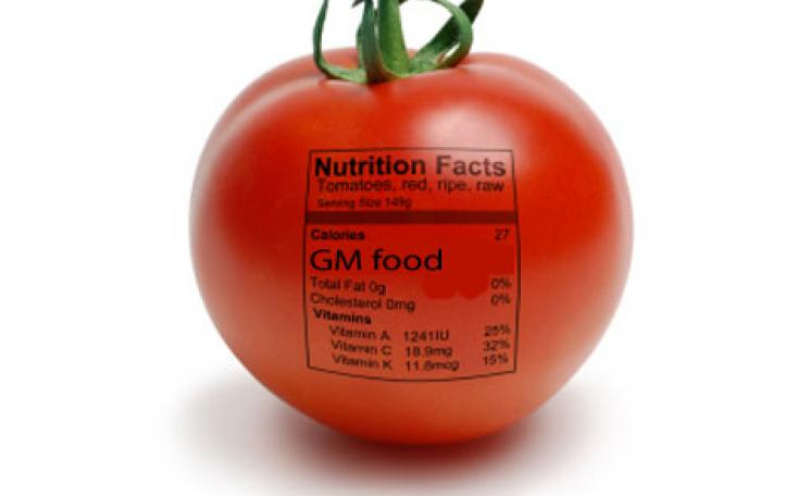 A gm labelled tomato