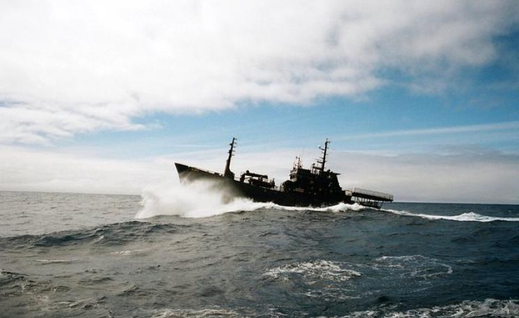 The Sea Shepherd vessel the Bob Barker braving the waves of the Southern Ocean in pursuit of the Japanese whaling ship the Nisshin Maru in 2010. The same boat is now chasing illegal fishing vessels in the same waters. Photo: wietse? via Flickr (CC BY-NS-S
