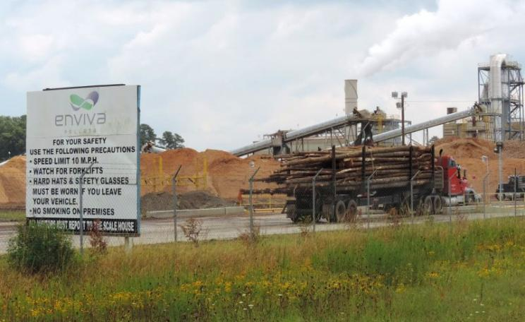 A truck pulls into the Enviva Ahoskie wood pellet plant that supplies Drax power station, loaded with whole trees. Photo: Dogwood Alliance.