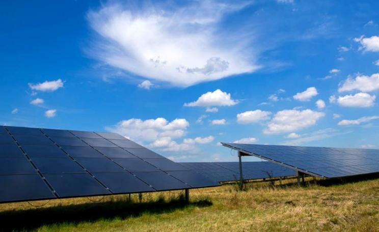 A field of solar panels under a blue sky