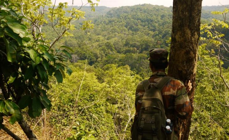 A guard admires a rainforest vista near Elephant Valley. Photo: William F. Laurance.