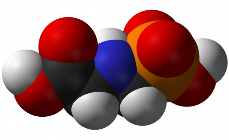 IARC believes the glyphosate molecule itself is damaging to health, not just commercial herbicide mixtures complete with co-formulants. Image: Benjah-bmm27 via Wikimedia Commons (Public Domain).