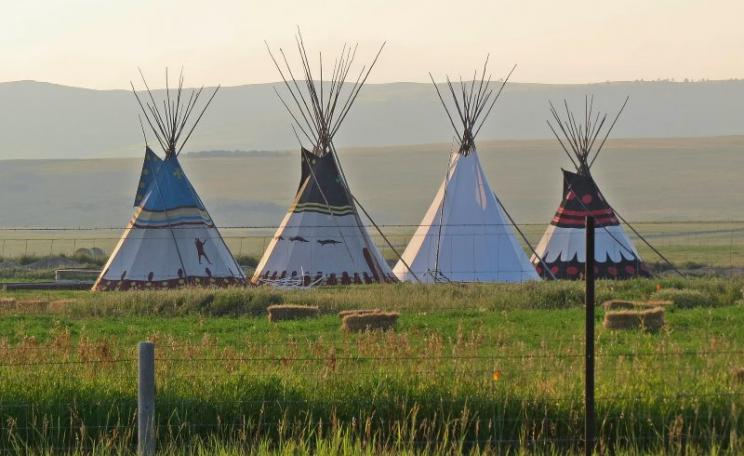 Fenced with barbed wire: Blackfeed Indian tipis near the Glacier Nation Park, where the NPS is excluding the Indians from their rightful access to the Park and its resources, in clear breach of an 1895 contract. Photo: Bon via Flickr (CC BY-NC-ND).
