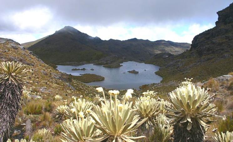 At risk - Laguna Verde in Paramo Santurban, Colombia. Photo: Grupo Areas Protegidas CORPONOR via Wikimedia Commons (CC BY-SA).