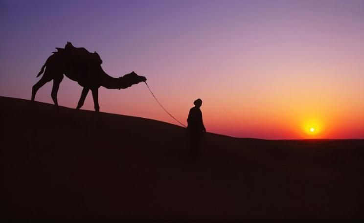 The Thar desert in Rajasthan, India. Photo: Nick Kenrick via Flickr (CC BY-NC-SA).